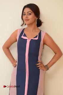 Actress Anu Emmanuel Pictures in Long Dress at Majnu Audio Success Meet 0014