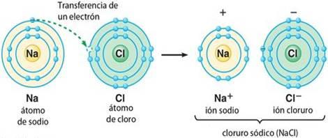 En compuestos como la sal común se produce una transferencia de electrones - ¿Qué es un enlace químico y en qué se clasifican? - sdce.es - sitio de consulta escolar