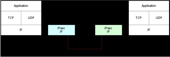 Gambar 4.8 Tunnel Mode IPsec