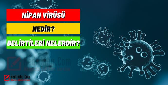 Nipah Virüsü Nedir?