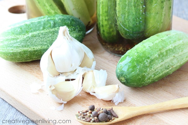 How to make refrigerator dill pickles - no canning required!