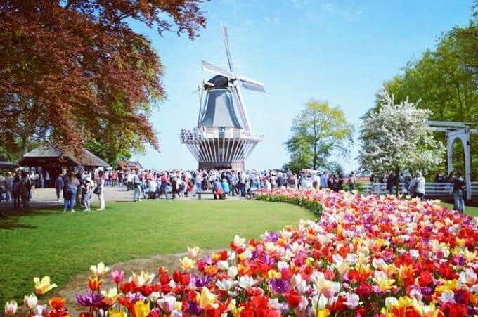 Kampoeng Tulip Bandung, Sensasi Belanda yang Ramah di Kantong