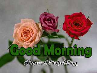 New Good Morning 4k Full HD Images Download For Daily%2B32