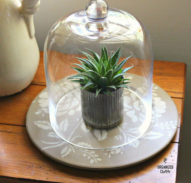 Stenciled Garage Sale Platter With Cloche & Succulent