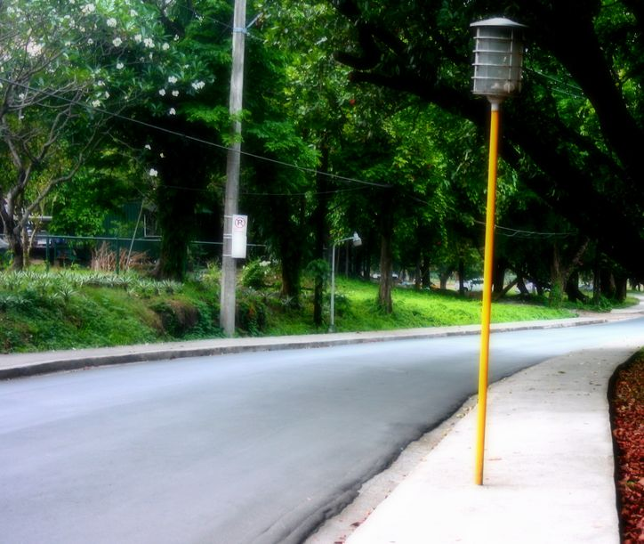 A quiet corner inside UP Diliman