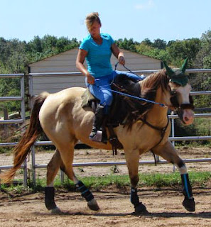 PSSM horse, PSSM rehab, horse muscle disorder