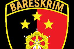 Download Logo Bareskrim Polri Vektor Format AI