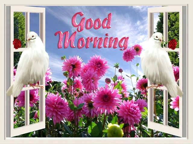 Good Morning SMS - Good Morning Messages in Hindi - New and Latest Good Morning SMS