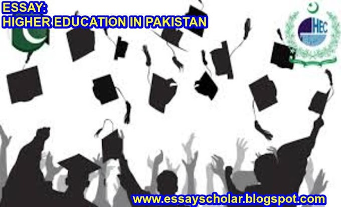 HIGHER EDUCATION IN PAKISTAN | Complete Essay with Outline | EssayScholar