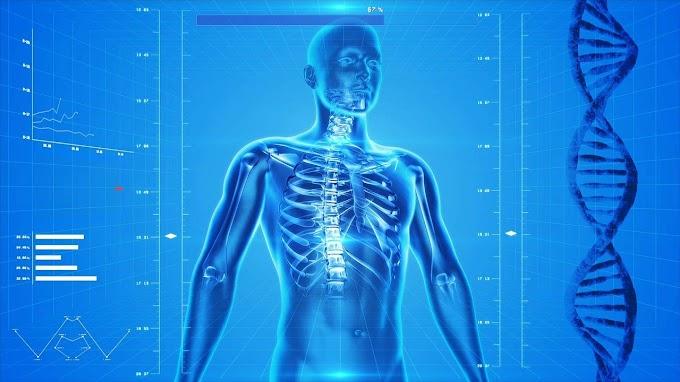 Micro-organisms and Human Health