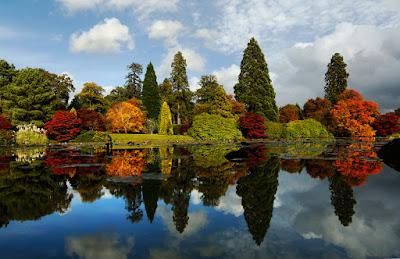 Tổng hợp ảnh đẹp về mùa thu cực sâu lắng