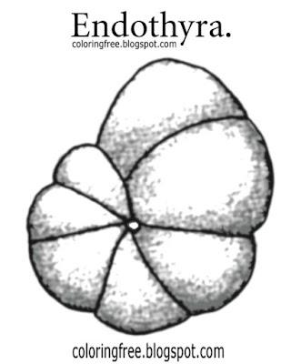 Dinosaur Fossil Diagram, Dinosaur, Free Engine Image For