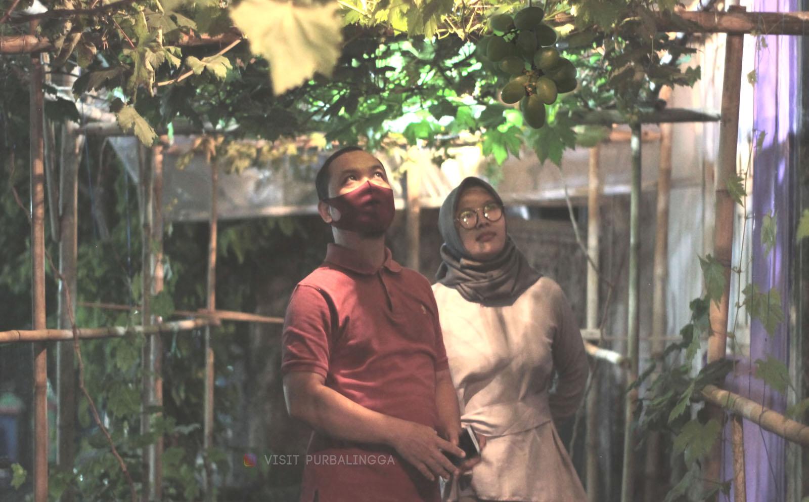 Kampung Tematik Di Purbalingga