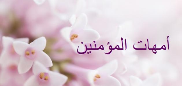 أمهات المؤمنين رضى الله عنهن، زوجات النبى صلى الله عليه وسلم