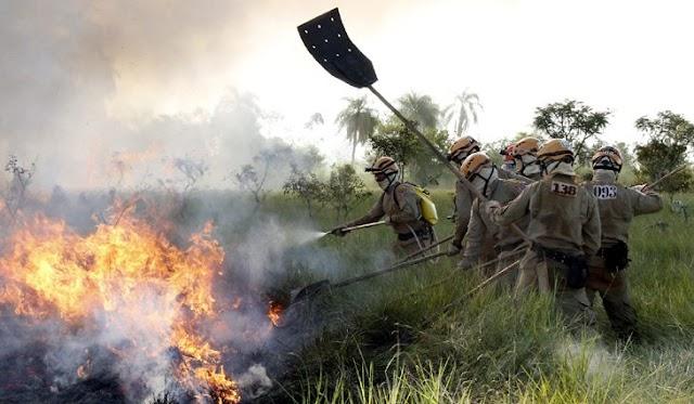 Estiagem e Incêndios: Governo decreta situação de emergência em todo o estado de MS