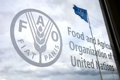 Logo and Seal of Food and Agriculture Organization