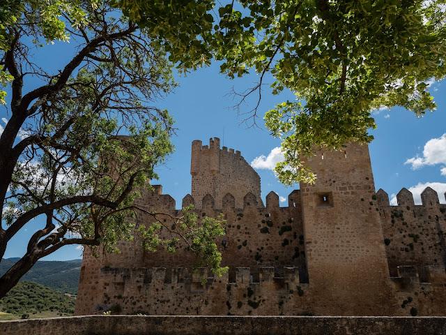 Castillo medieval con árboles