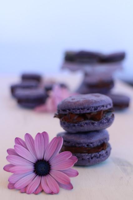 macarons-de-violetas