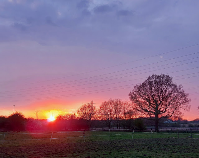 A sunset photo taken across a field