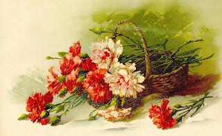 flower carnation artwork image digital illustration clipart
