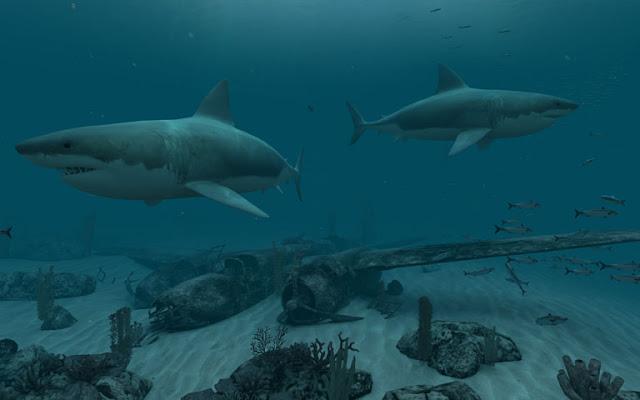 Screenshot Sharks - Great White 3D Screensaver 1.1 Build 8 Full Version