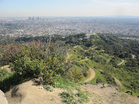 Mt. Hollywood