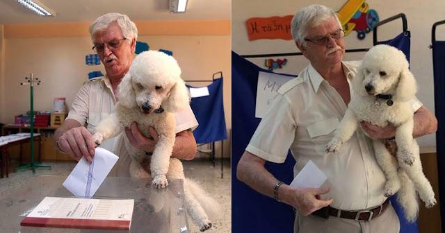 Ψηφοφόρος πήγε με το σκυλάκι του να ψηφίσει και έκλεψαν την παράσταση