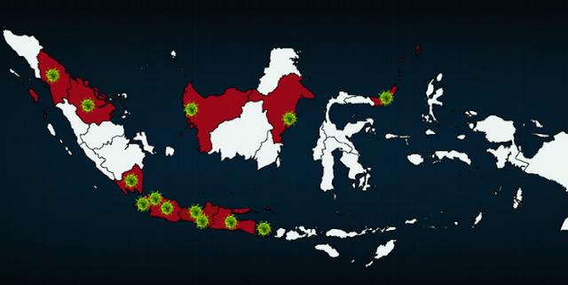 Kasus Corona di Indonesia Hari Ini Melonjak Jadi 309 Orang, Ini 16 Provinsi yang Sudah Terinfeksi