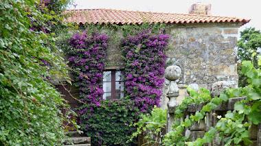 El jardín de los pazos gallegos