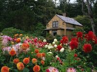 Garden house puzzle
