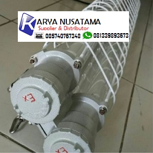 Jual Fluorescent lamp type BPY 2x36watt With Balast di Kalimantan