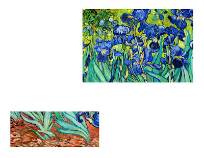 Irises in Flowerbed White Canvas