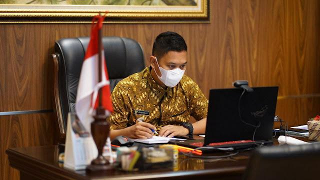 Wakil Bupati Lingga Jadi Narasumber Webinar Propaktani Kementan