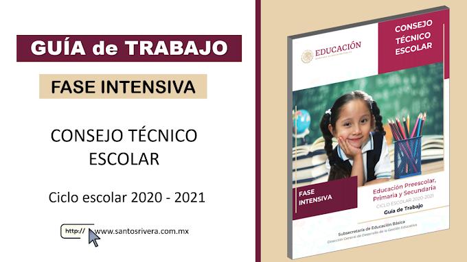 GUÍA de TRABAJO para la Fase Intensiva del Consejo Técnico Escolar (CTE) 2020