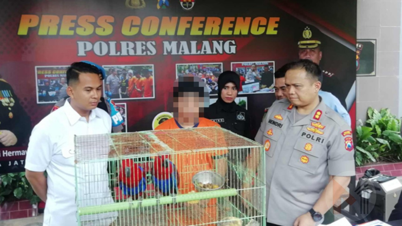 Polres Malang Bekuk Seorang  Pedagang Burung Langka Dilindungi