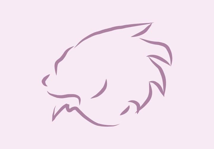Horoscop Leu 2022