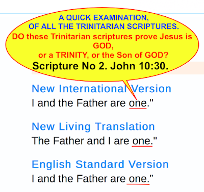 I And The Father Are ONE, John 10:30, What Did Jesus Mean?
