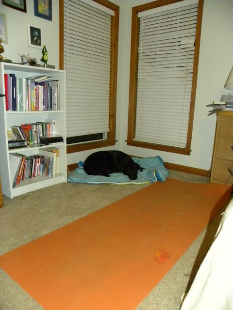 Downdogs And Deadlines Personal Yoga Space