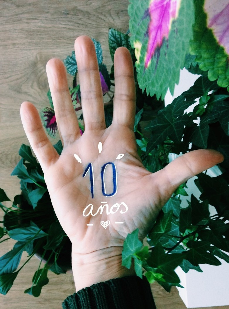Balance diez años de vegetariana / vegana. La Cazuela Vegana.