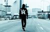 Daftar Kumpulan Lagu Alan Walker