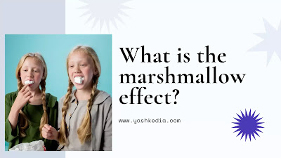 What is the marshmallow test effect?