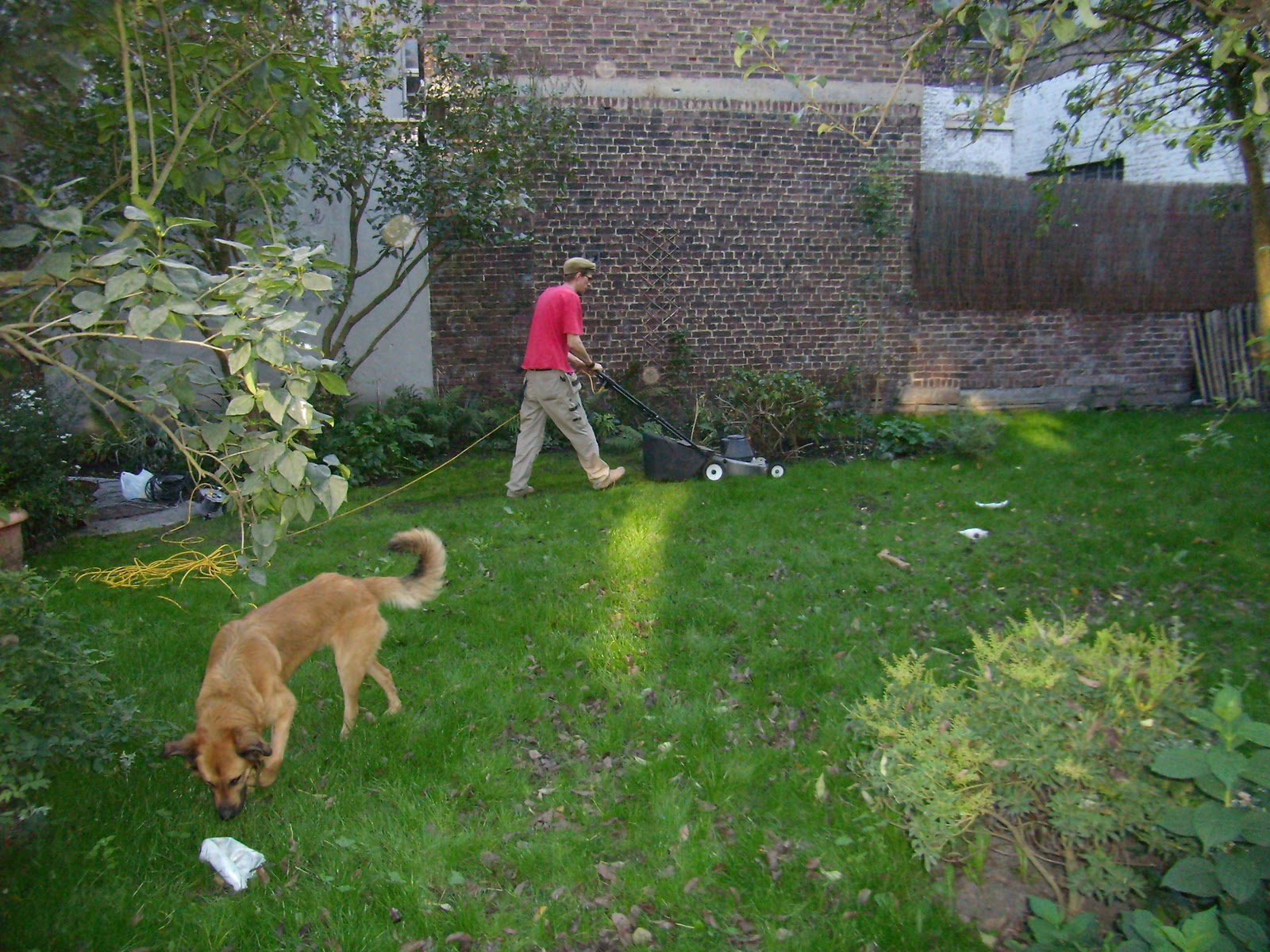 et la pelouse pousse