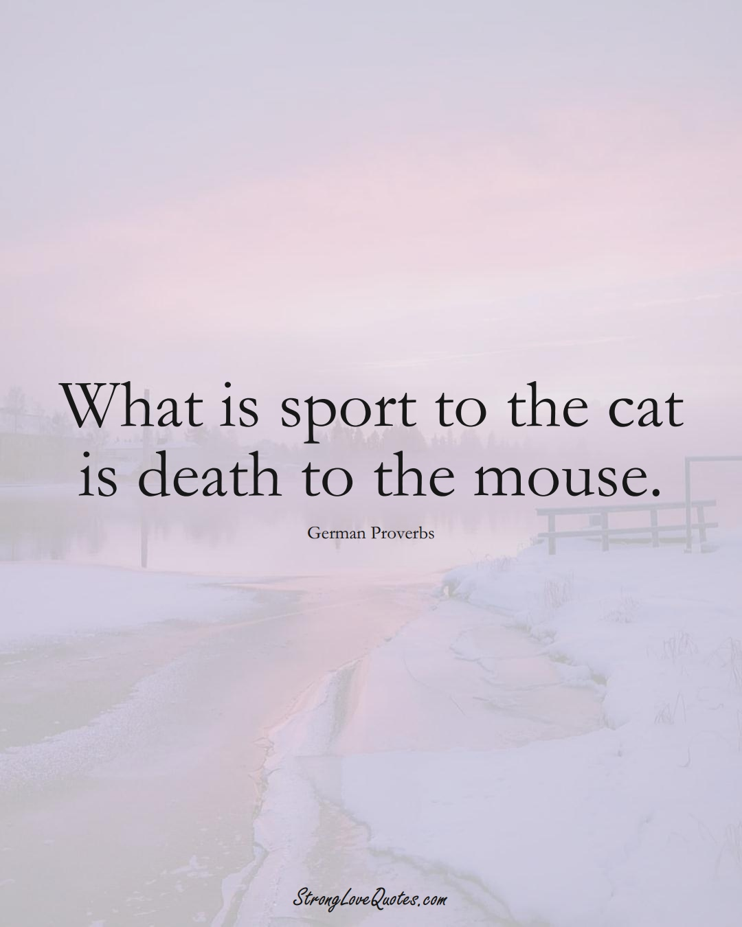 What is sport to the cat is death to the mouse. (German Sayings);  #EuropeanSayings