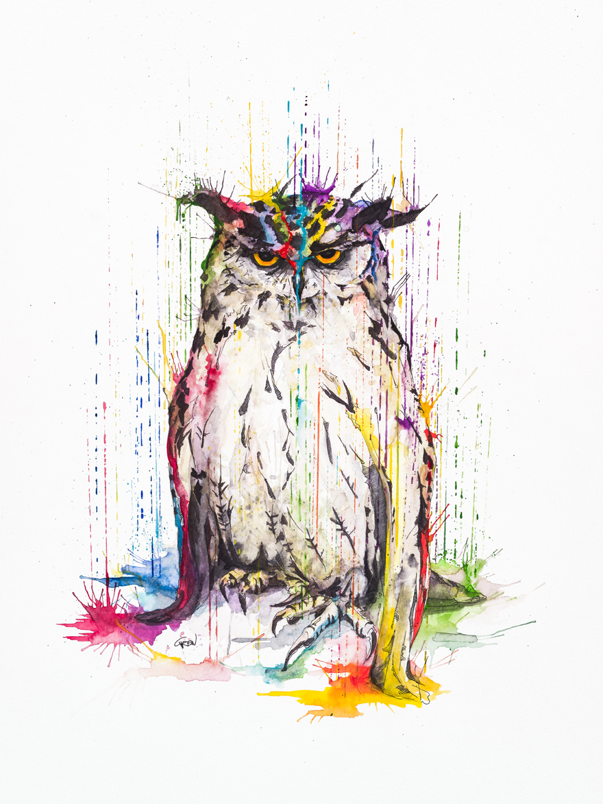 06-Owl-Philipp-Grein-Animal-Paintings-in-Splashes-of-Color-www-designstack-co