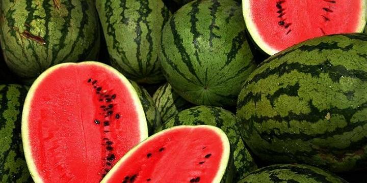 Manfaat Semangka untuk Kesehatan dan Kecantikan