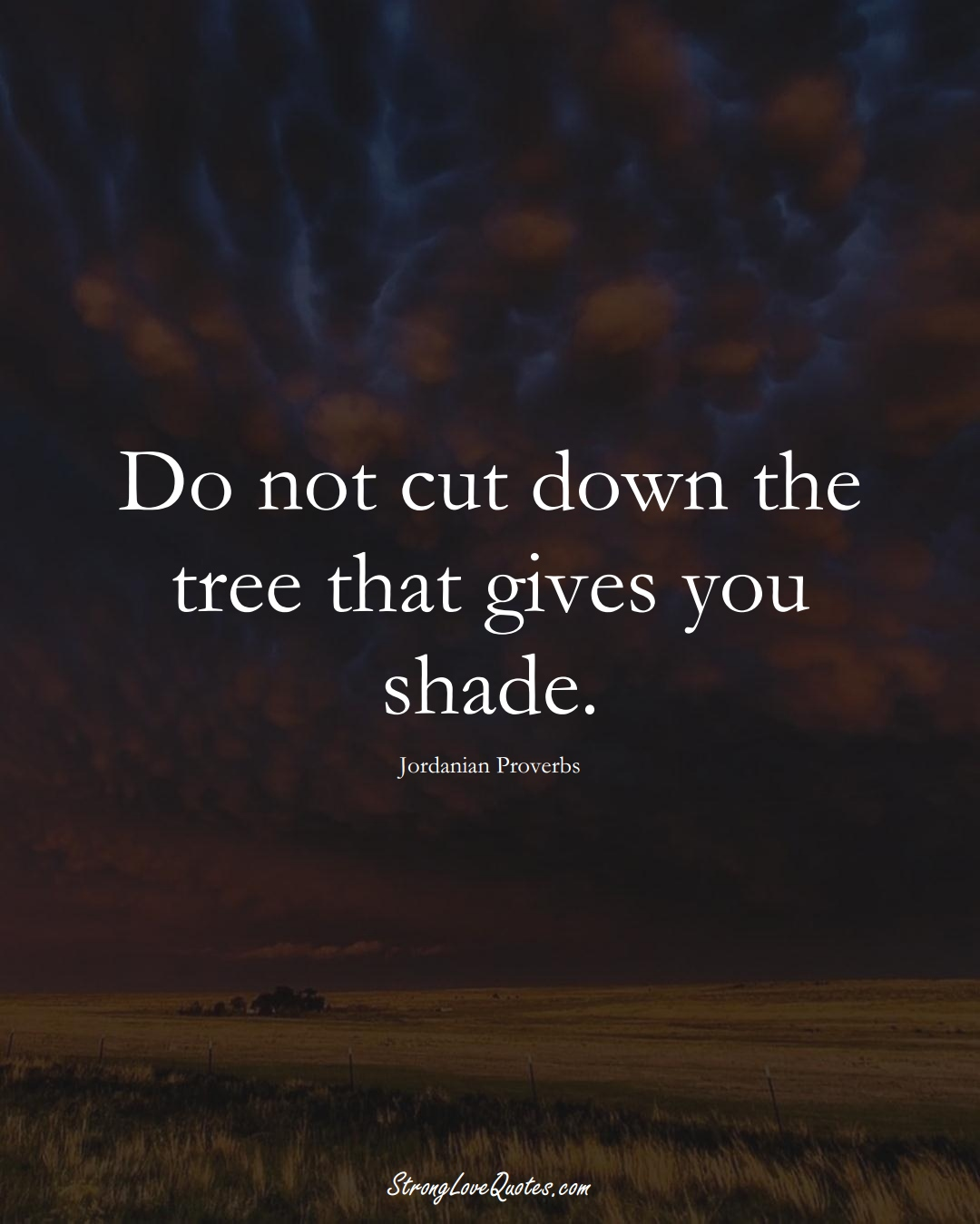 Do not cut down the tree that gives you shade. (Jordanian Sayings);  #MiddleEasternSayings