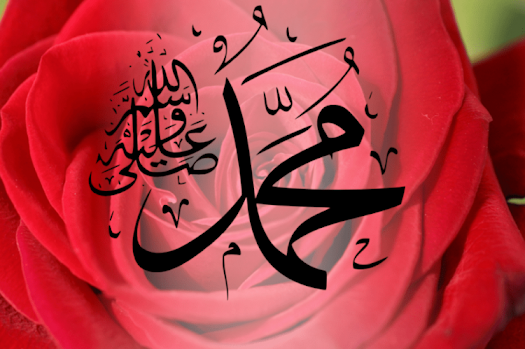 Peygamberimizin Sünneti Nasıl Korunuyor?