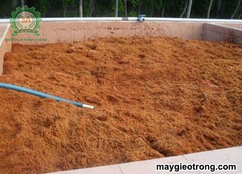 Cách xử lý xơ dừa làm giá thể trồng cây