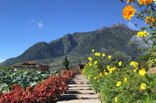 Ini 5 Wisata Alam Indah dan Mempesona di Solo Jawa Tengah