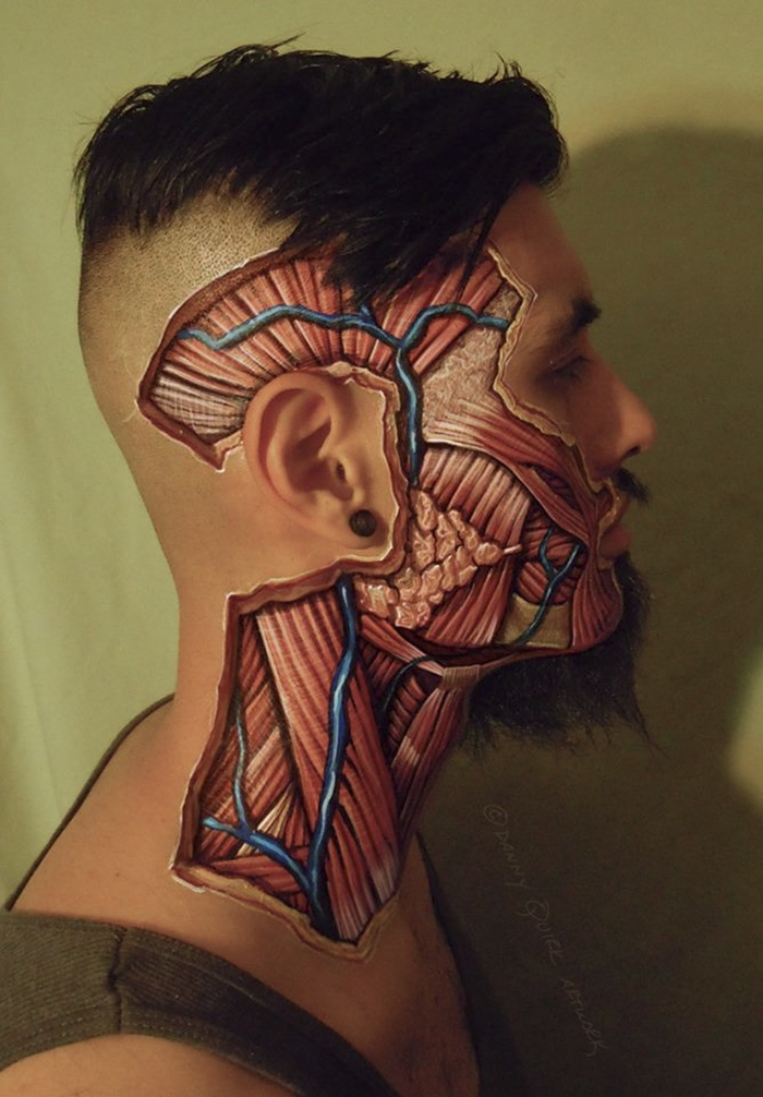 08-Danny-Quirk-Anatomy-Explored-with-Body-Painting-www-designstack-co